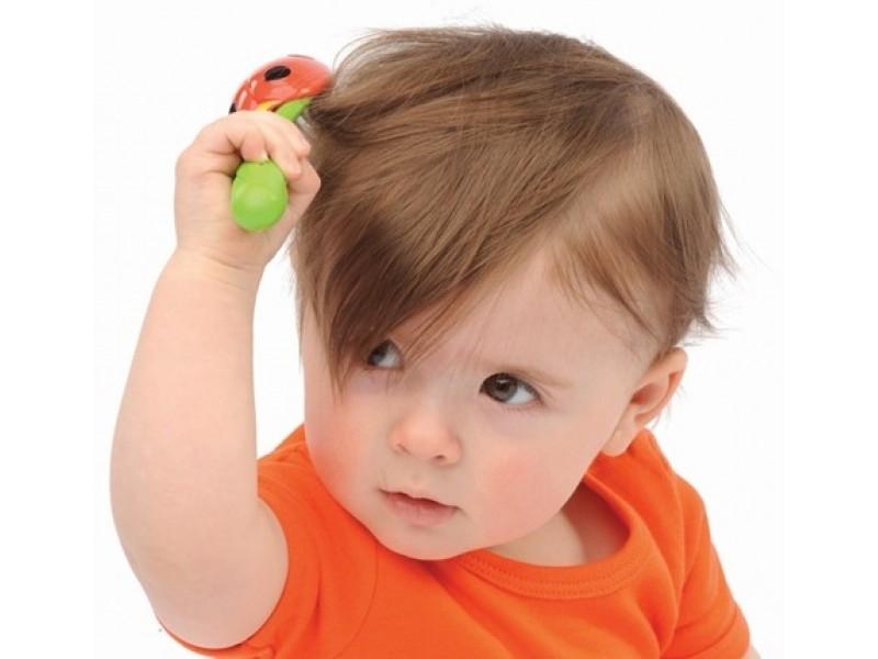 Montessori - Hướng dẫn chải đầu