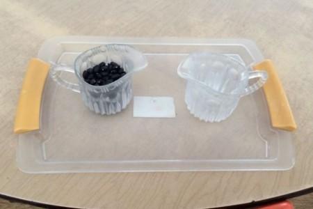 Montessori - Hướng dẫn Đổ hạt từ ly trong sang ly trong