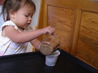 Montessori - Hướng dẫn Đổ hạt từ ly trong sang ly đặc